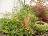 Birdbath and shade planting