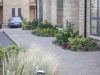Shade Planting to the front of the townhouses, Marino Park