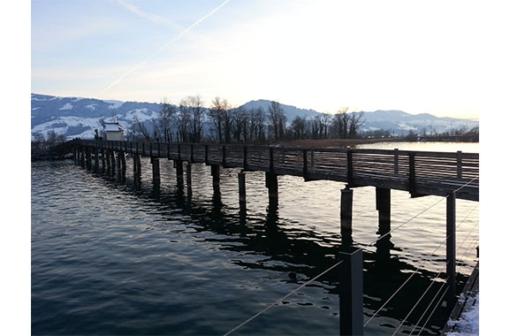 View of wooden bridge